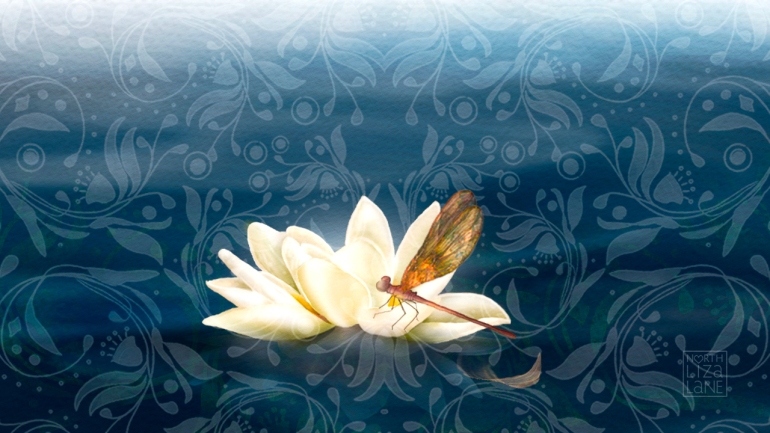 Lotus Arrives